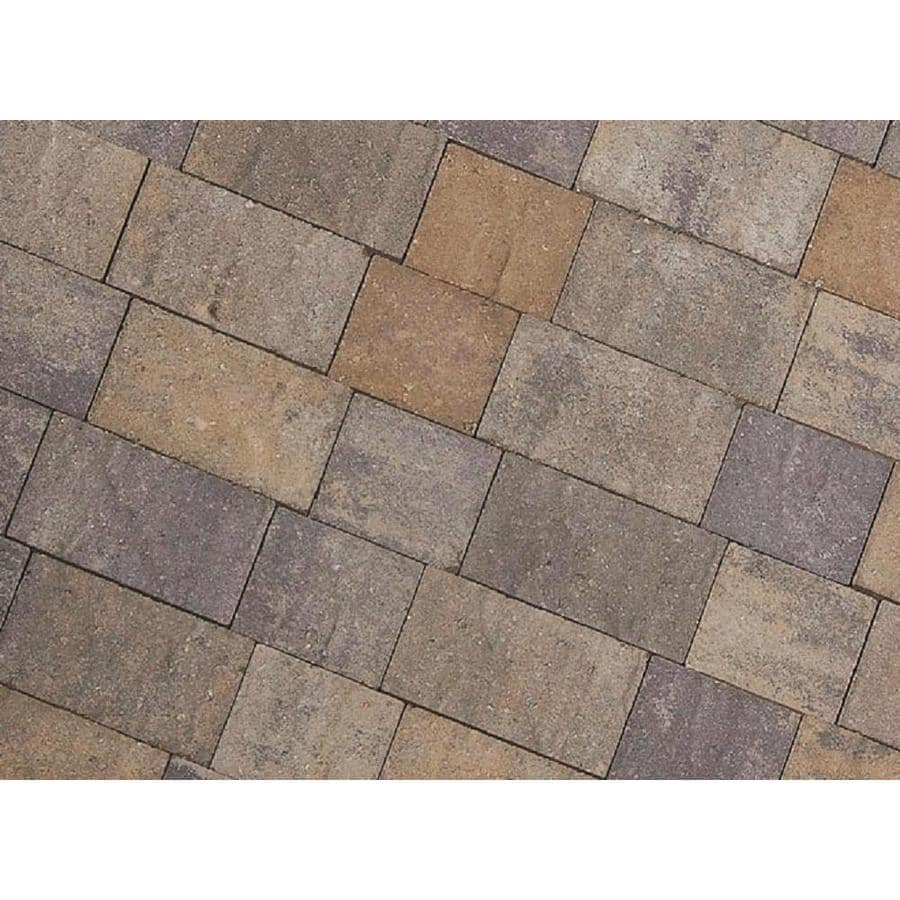 CastleLite Century Stone Tahoe Blend Paver (Common: 6-in x 9-in; Actual: 5.5-in x 8-in)