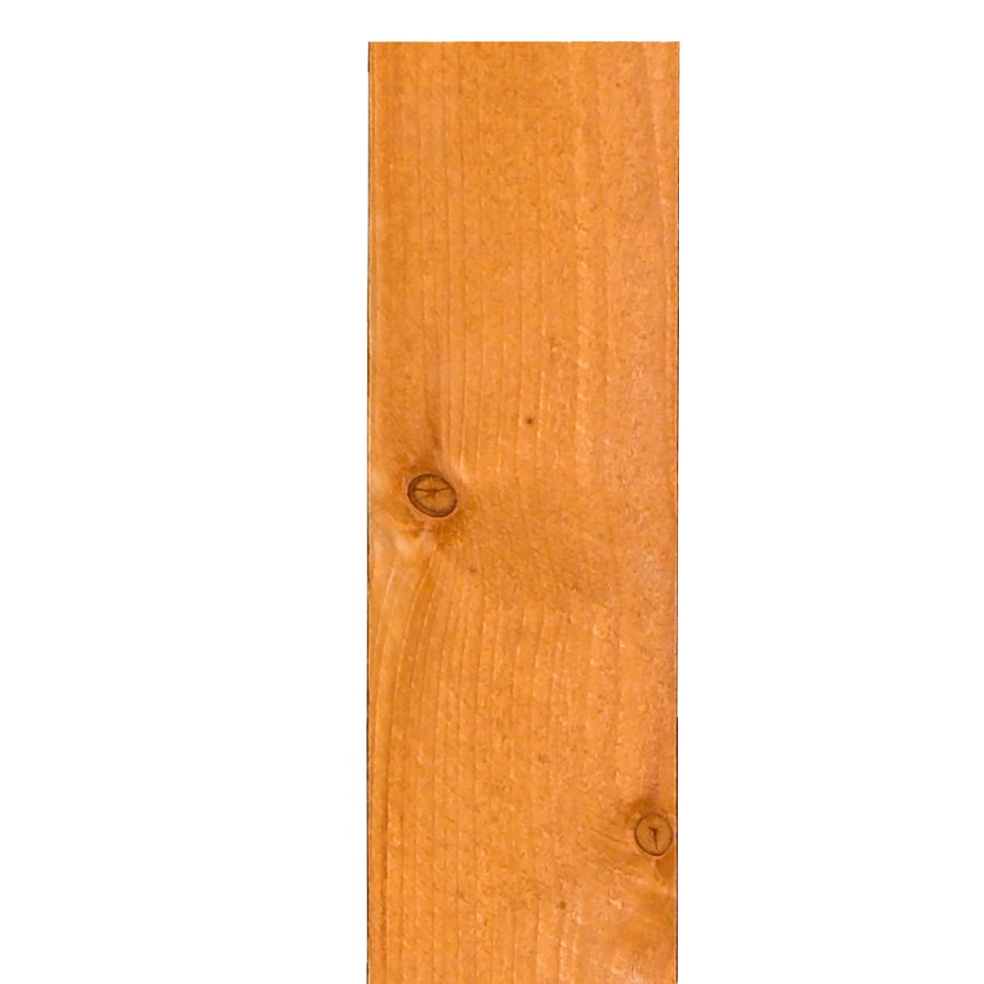 Severe Weather Rightwood Sahara Gold Whitewood Fence Picket (Common: 5/8-in x 5-1/2-in x 6-ft; Actual: 0.57-in x 5.5-in x 6-ft)