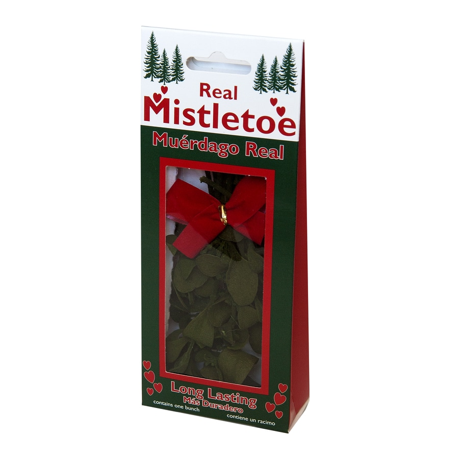 Enviro-Log Fresh Christmas Mistletoe