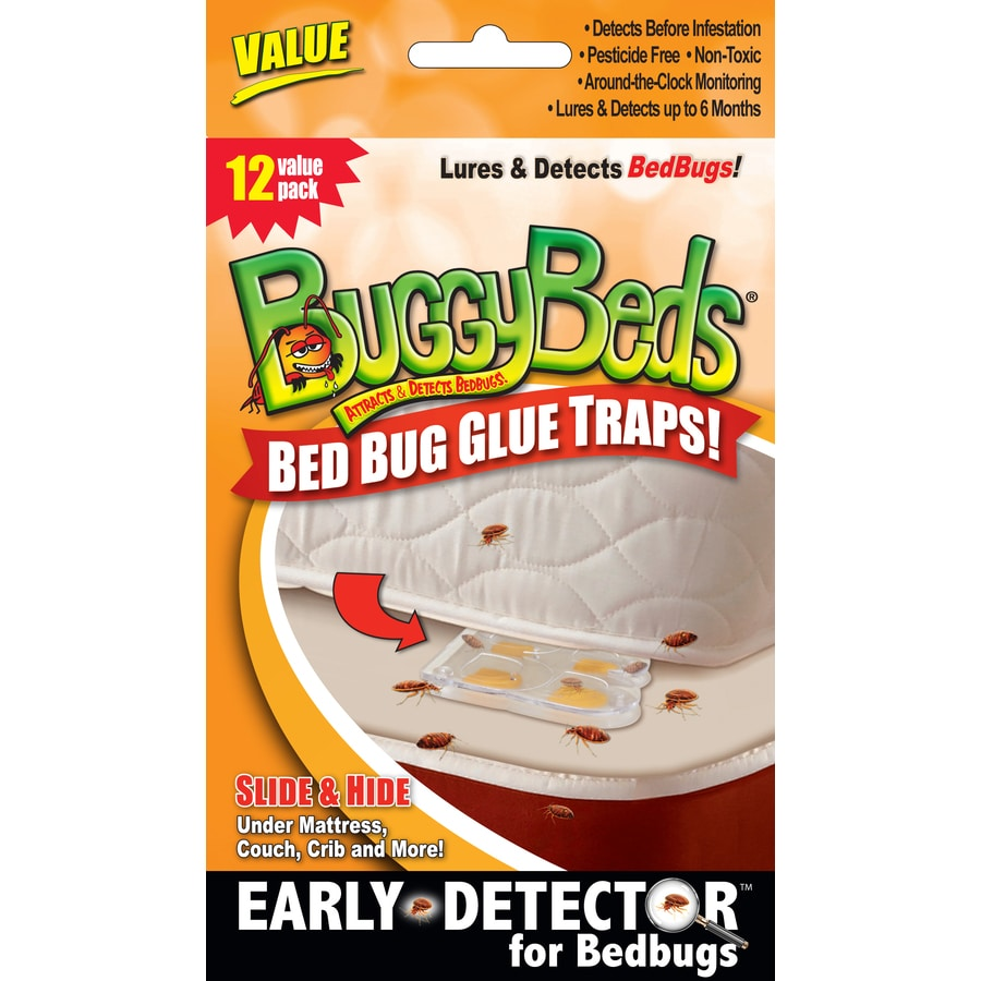 Buggybeds 12 Count Bed Bug Glue Traps At Lowes Com