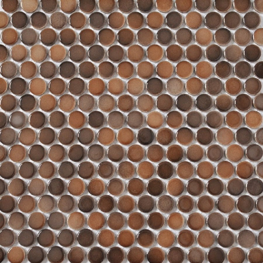Style Selections 5 Pack Bronze Penny Round Mosaic Porcelain Wall Tile Common 11