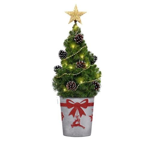 Real Christmas Trees Lowes: Mickman Brothers 3-5-ft Spruce Real Christmas Tree At