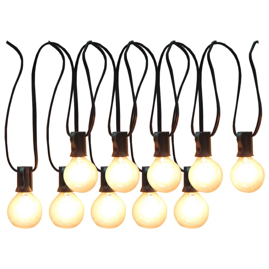 Shop allen + roth 12-ft Clear Edison Bulb Patio String Lights at ...