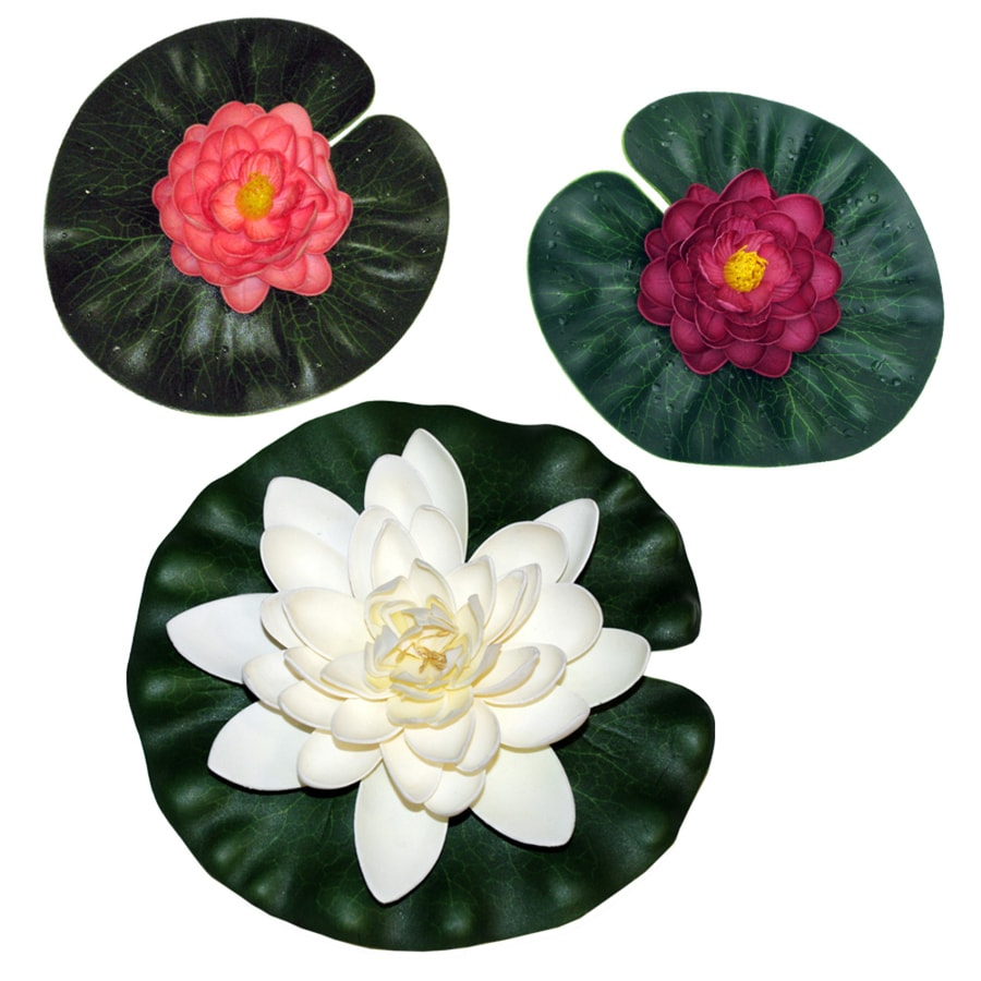 Shop Smartpond Multicolored Pond Lilies At Lowes