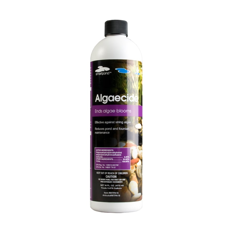 smartpond Smartpond Pond and Fountain Algaecide 16-oz