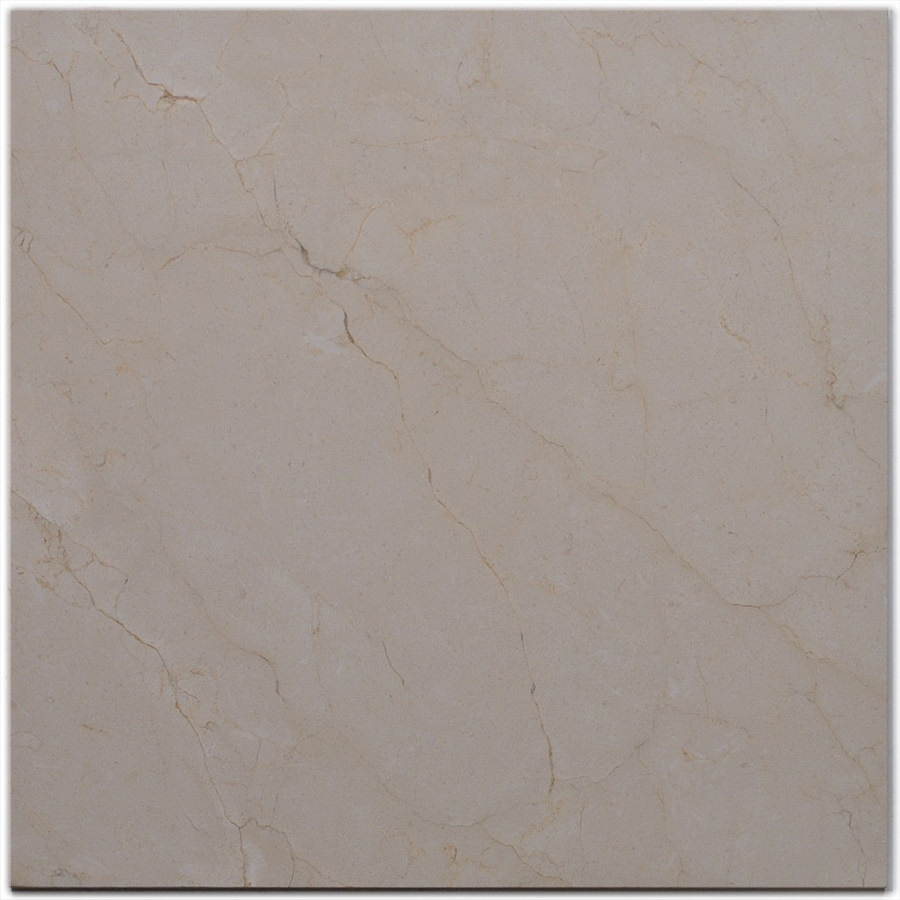 Shop big pacific 18 in x 18 in crema marfil marble floor for 18 x 18 marble floor tile