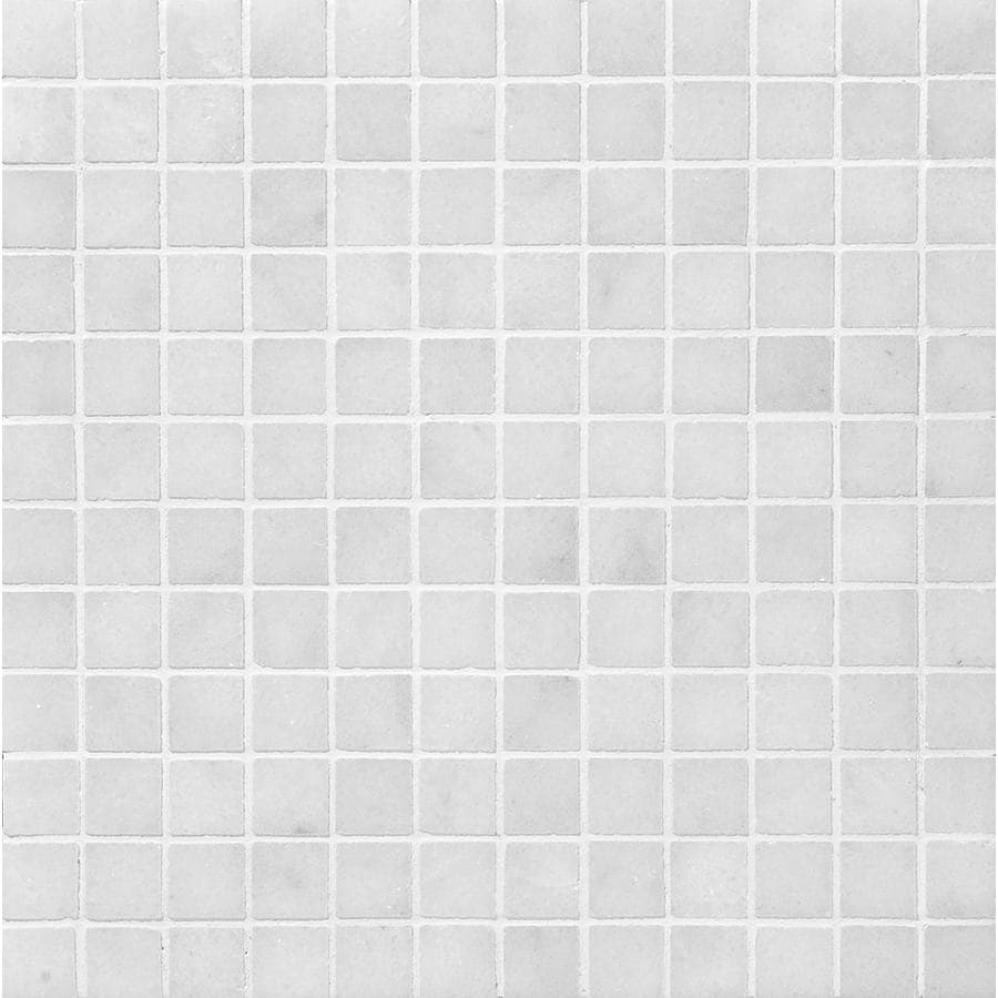 Bermar Natural Stone Arctic White Honed Marble Floor and Wall Tile (Common: 12-in x 12-in; Actual: 12-in x 12-in)