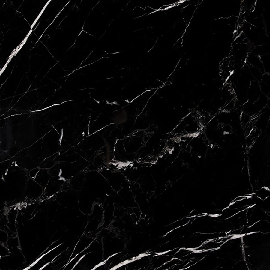 Bermar Natural Stone Black Marble Honed Marble Floor and Wall Tile (Common: 18-in x 18-in; Actual: 18-in x 18-in)
