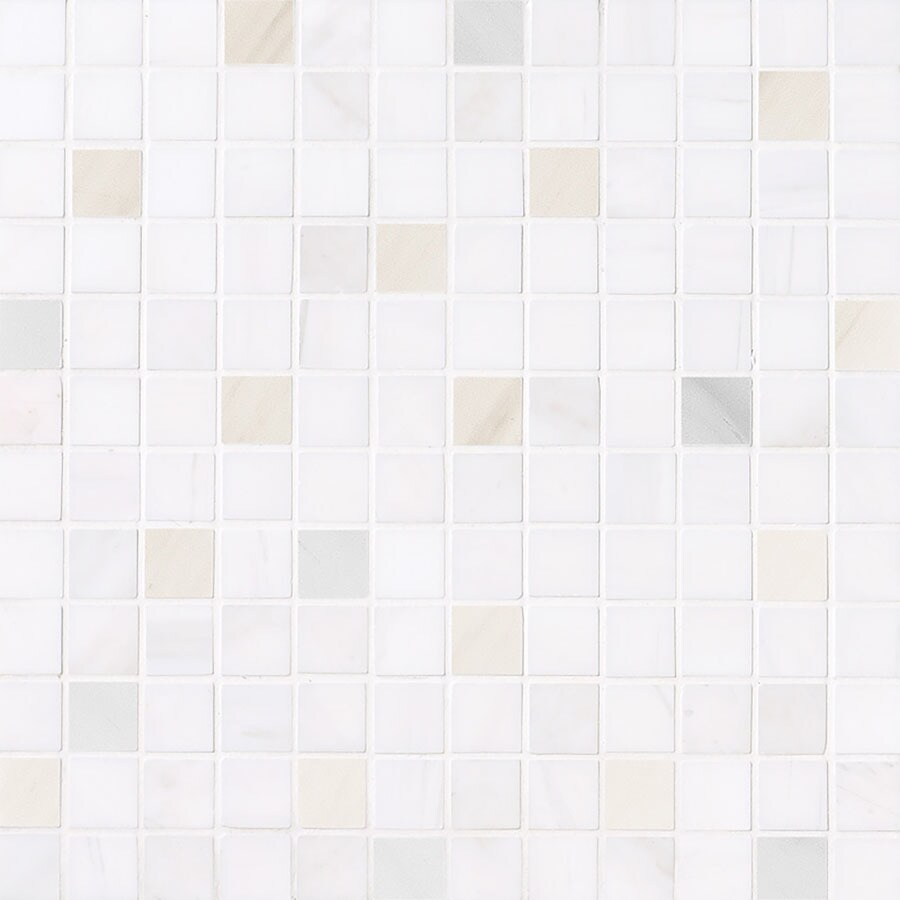 Bermar Natural Stone Izmir Polished Marble Floor and Wall Tile (Common: 12-in x 12-in; Actual: 12-in x 12-in)