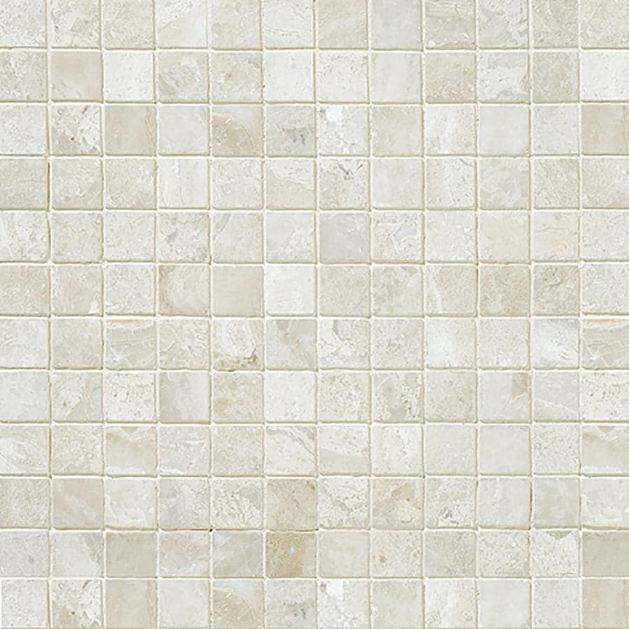 Bermar Natural Stone Royal Beige Honed Marble Floor and Wall Tile (Common: 12-in x 12-in; Actual: 12-in x 12-in)