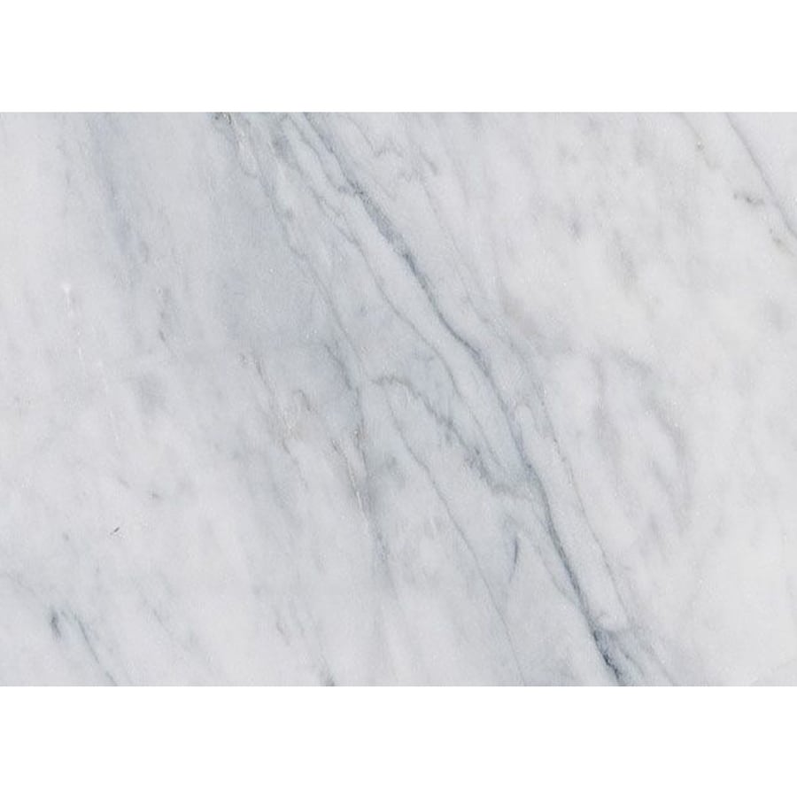 Shop Bermar Natural Stone White Cloud Honed Marble Floor and Wall ...