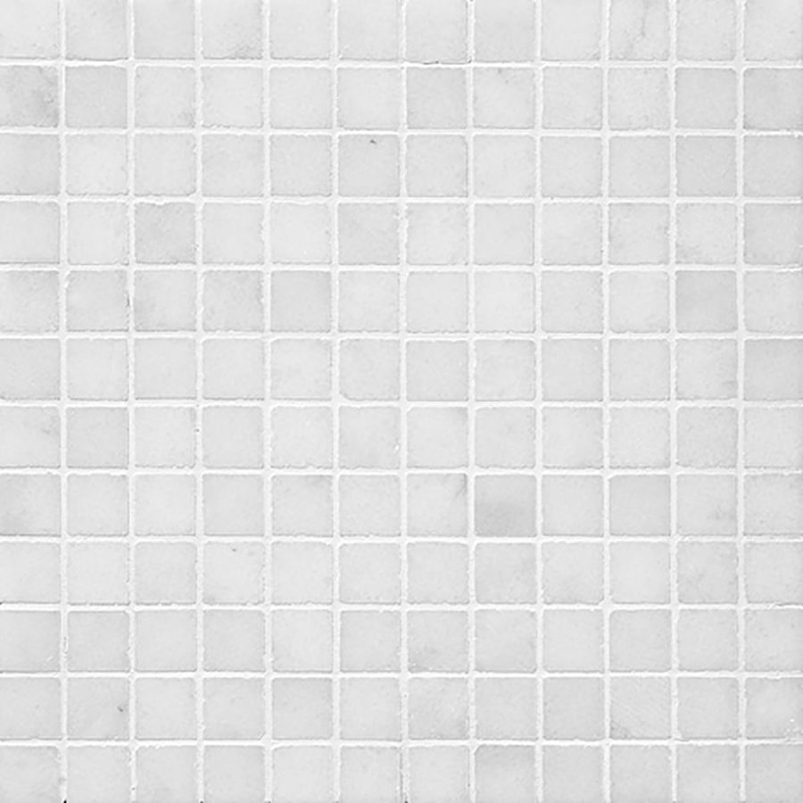 Bermar Natural Stone Arctic White Polished Marble Floor and Wall Tile (Common: 12-in x 12-in; Actual: 12-in x 12-in)