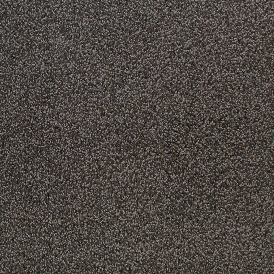STAINMASTER Active Family Oak Grove Brown/Tan Interior Carpet