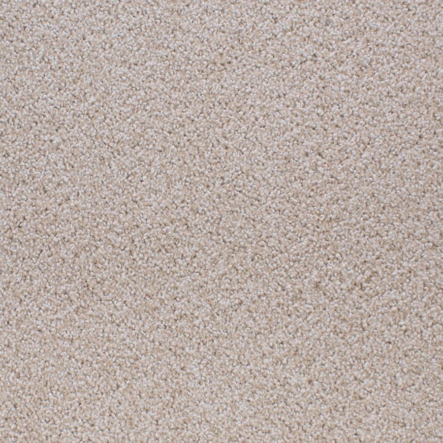 STAINMASTER Active Family Oak Grove 12-ft W Cream/Beige/Almond Textured Interior Carpet