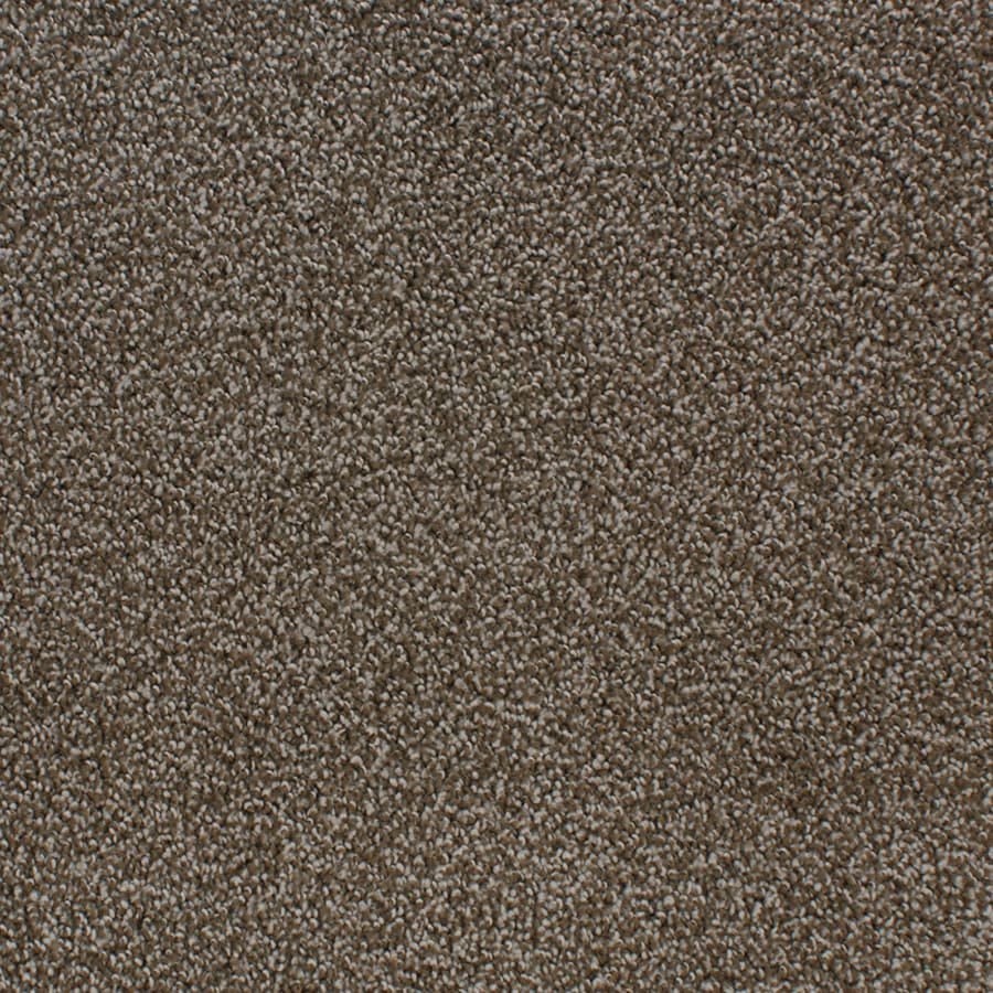 STAINMASTER Active Family Oak Grove 12-ft W x Cut-to-Length Brown/Tan Textured Interior Carpet