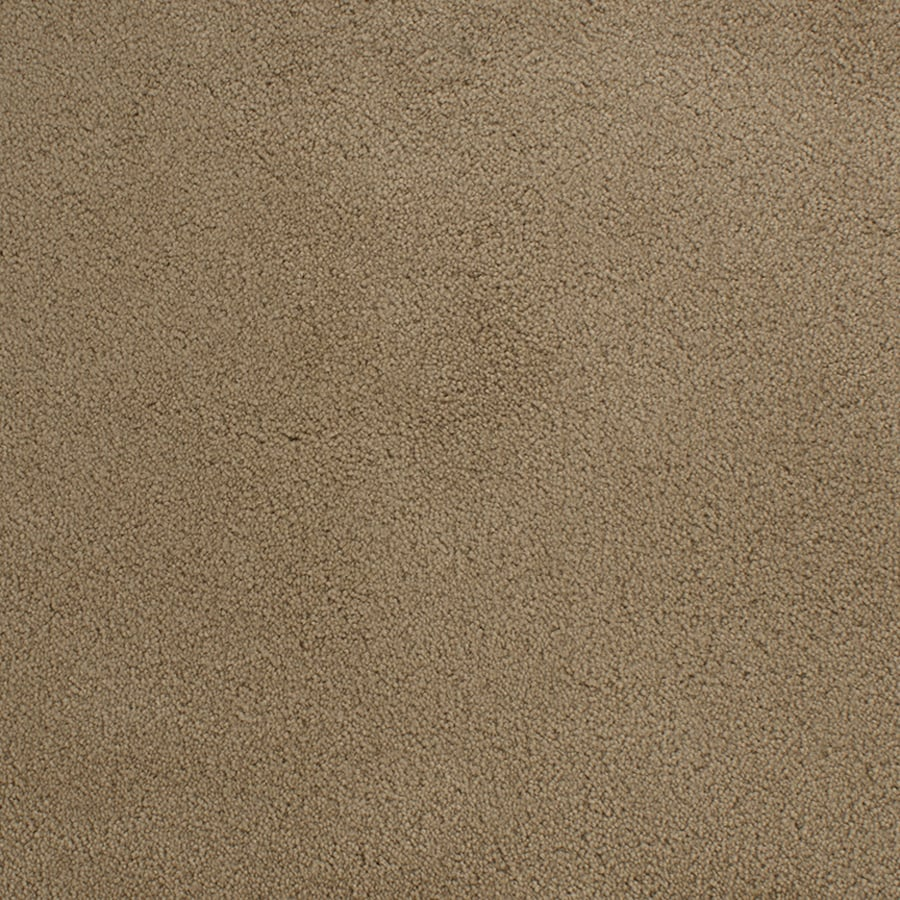 STAINMASTER Active Family Capri Place Brown/Tan Plush Interior Carpet