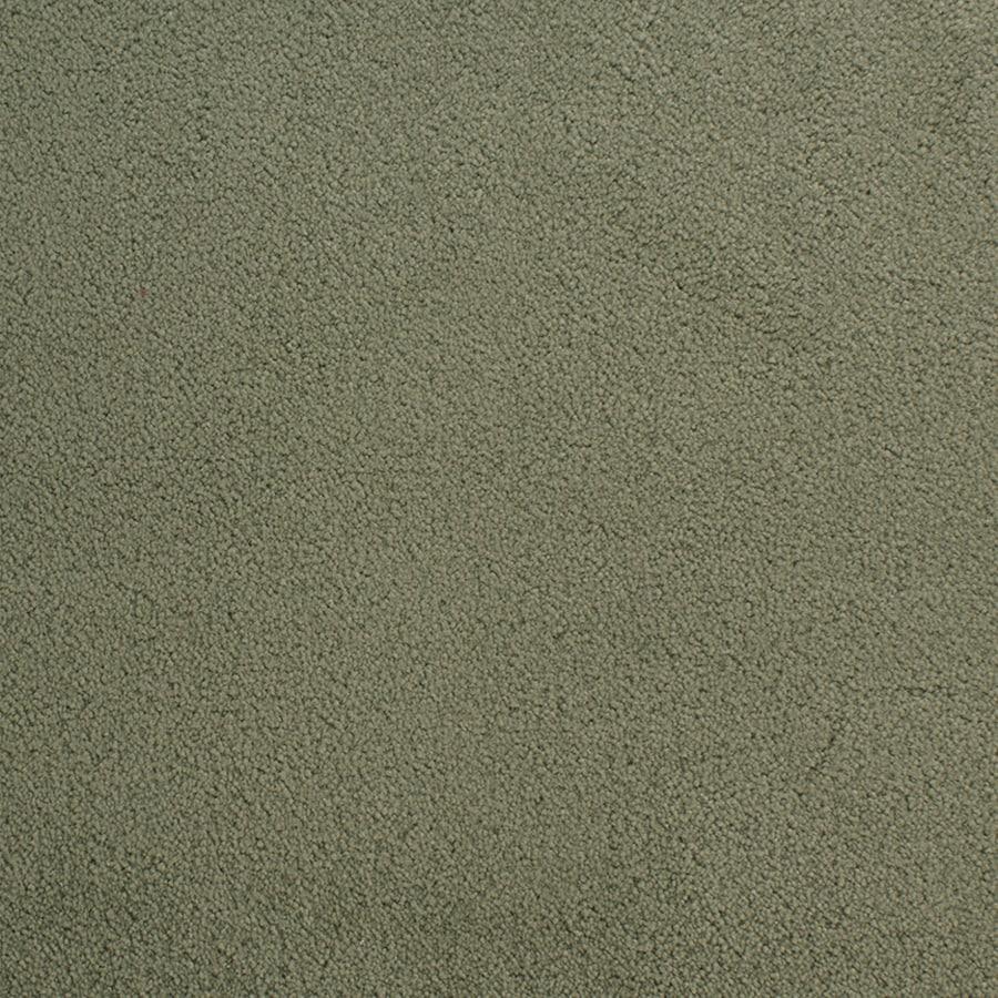 STAINMASTER Active Family Capri Place Green Plush Interior Carpet