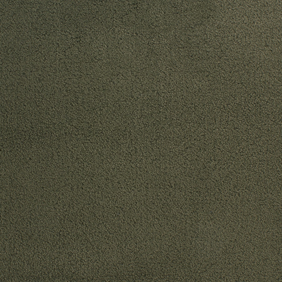STAINMASTER Active Family Capri Place Green Plush Interior Carpet