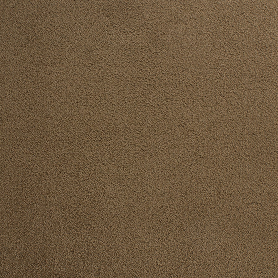 STAINMASTER Active Family Capri Place 12-ft W x Cut-to-Length Brown/Tan Plush Interior Carpet
