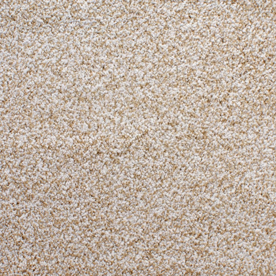 Cream Carpet Texture on Quarter Sawn Oak Flooring