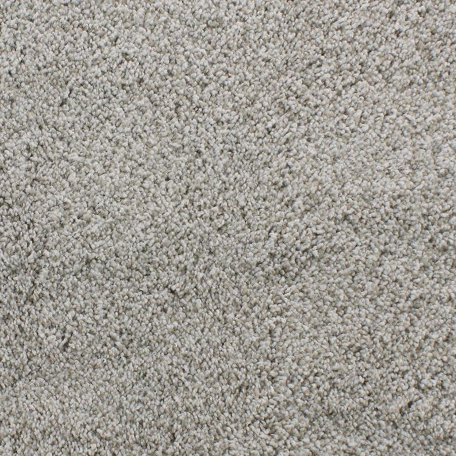 Dixie Group Active Family Exuberance III 12-ft W x Cut-to-Length Cream/Beige/Almond Textured Interior Carpet