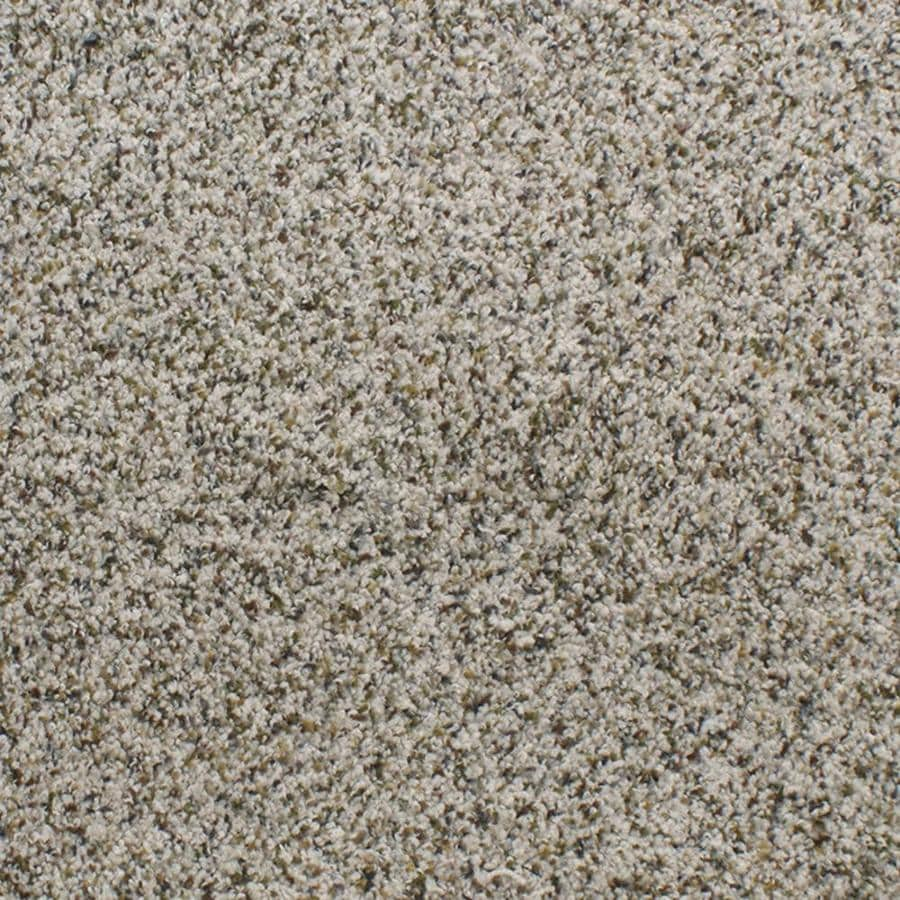 Dixie Group Active Family Exuberance III Cream/Beige/Almond Textured Interior Carpet