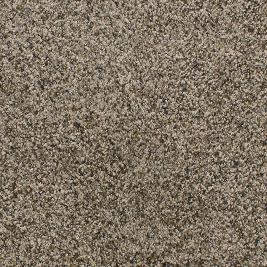 Dixie Group Active Family Exuberance III 12-ft W Brown/Tan Textured Interior Carpet