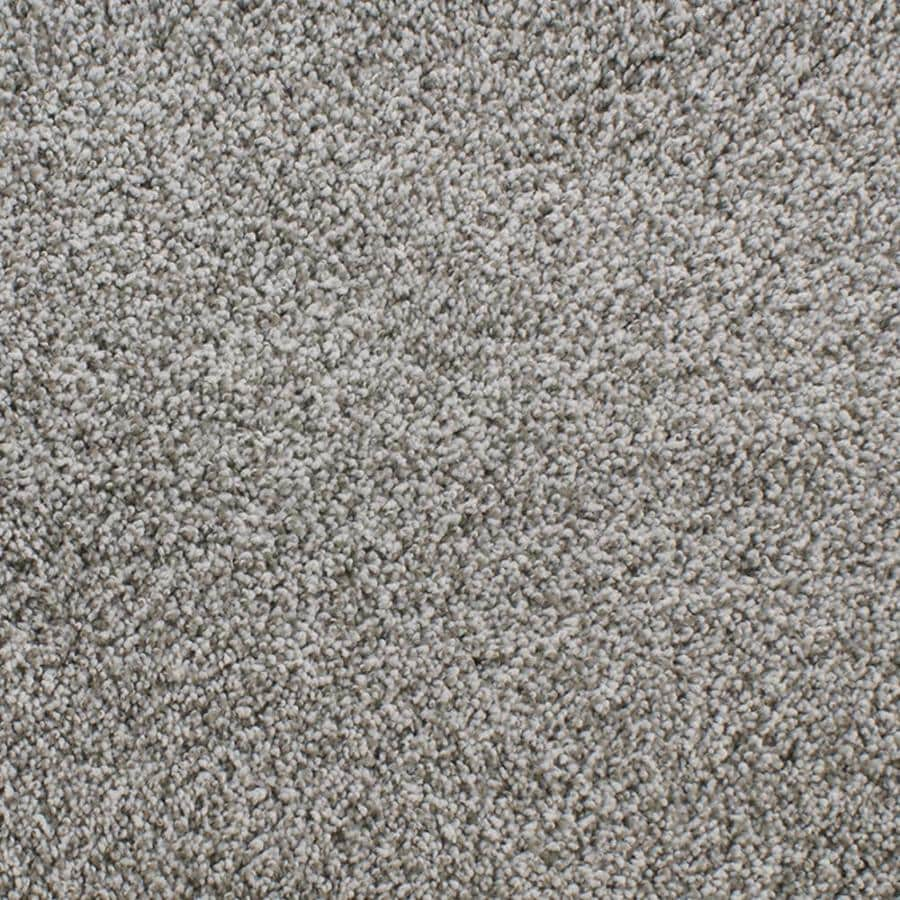 Dixie Group Active Family Exuberance III Gray/Silver Textured Interior Carpet