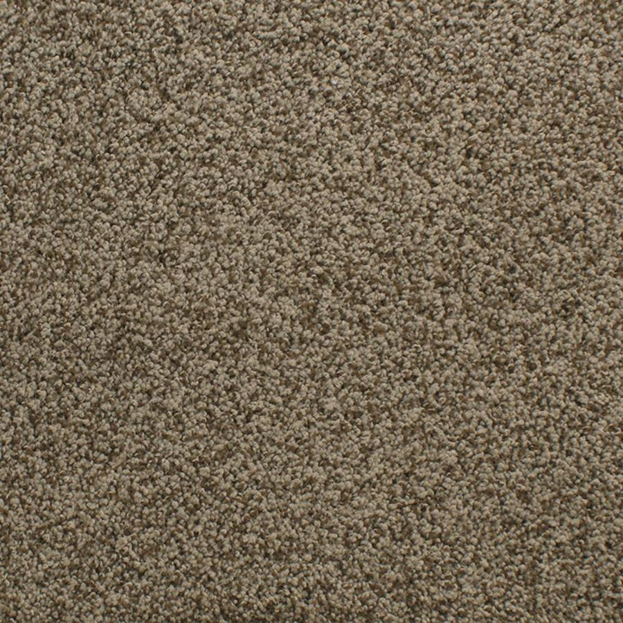 Dixie Group Active Family Exuberance III Brown/Tan Textured Interior Carpet