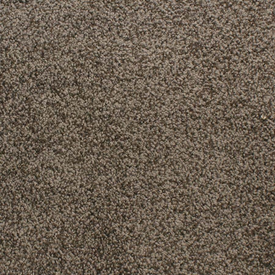 Dixie Group Active Family Exuberance III Brown/Tan Textured Interior Carpet