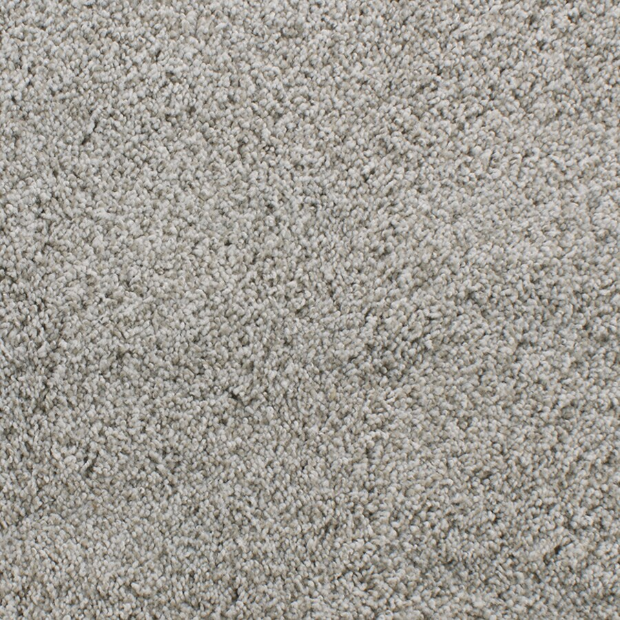 Dixie Group Active Family Exuberance I 102 Cream Textured Indoor Carpet