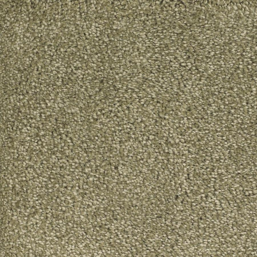 STAINMASTER TruSoft Briar Patch 12-ft W Green Textured Interior Carpet