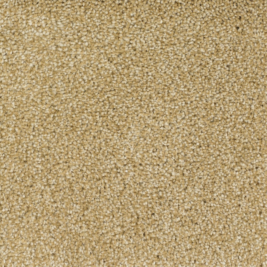 STAINMASTER TruSoft Briar Patch Yellow/Gold Textured Indoor Carpet