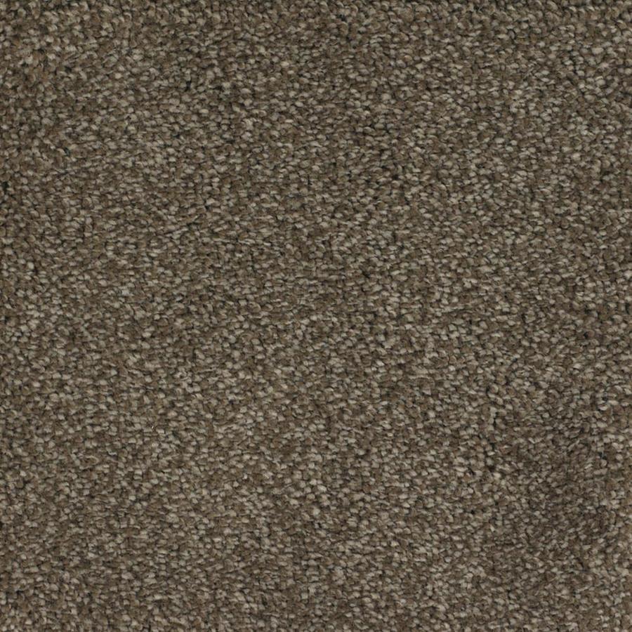 STAINMASTER TruSoft Briar Patch Brown/Tan Textured Interior Carpet