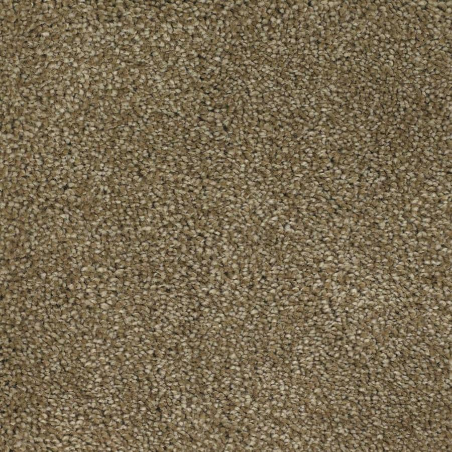 STAINMASTER TruSoft Briar Patch Brown/Tan Textured Interior Carpet