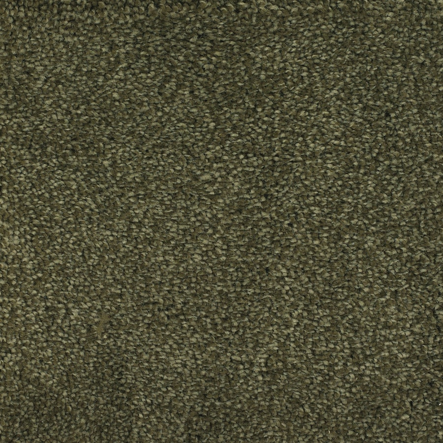 STAINMASTER TruSoft Briar Patch Green Textured Indoor Carpet