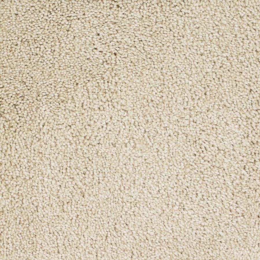 STAINMASTER TruSoft Shafer Valley 12-ft W Cream/Beige/Almond Textured Interior Carpet