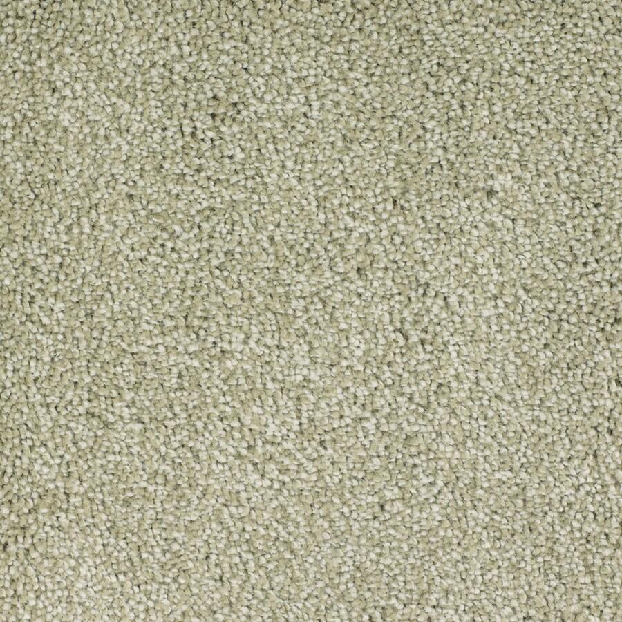 STAINMASTER TruSoft Shafer Valley 12-ft W Green Textured Interior Carpet