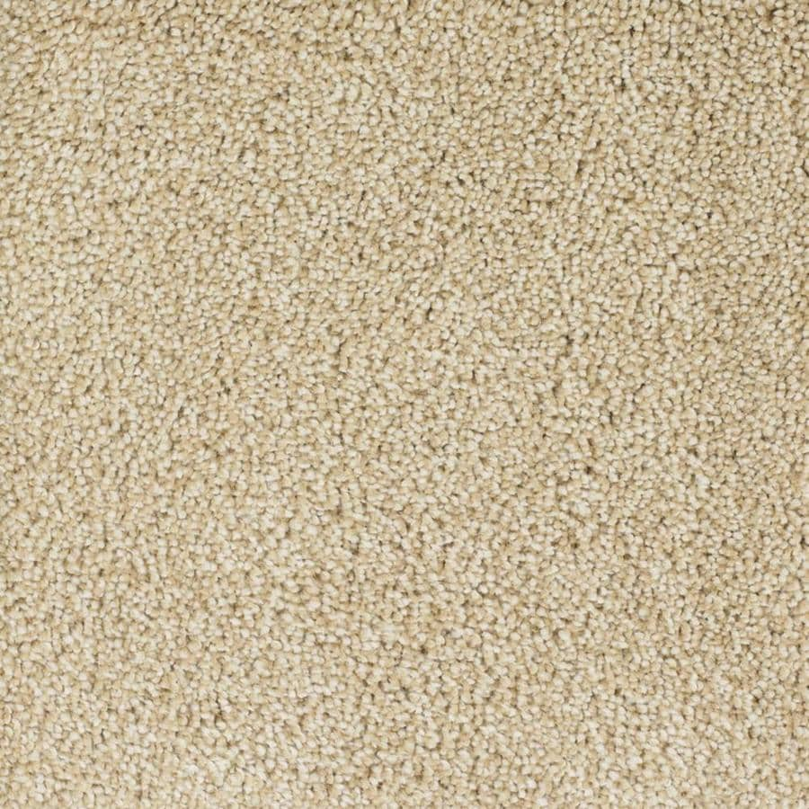 STAINMASTER TruSoft Shafer Valley 12-ft W Cream/Beige/Almond Textured Interior Carpet