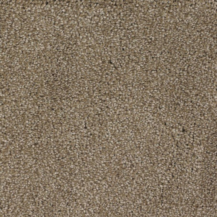 STAINMASTER TruSoft Shafer Valley Brown/Tan Textured Interior Carpet