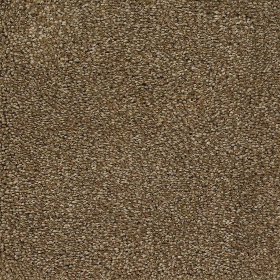 STAINMASTER TruSoft Shafer Valley Brown/Tan Textured Indoor Carpet