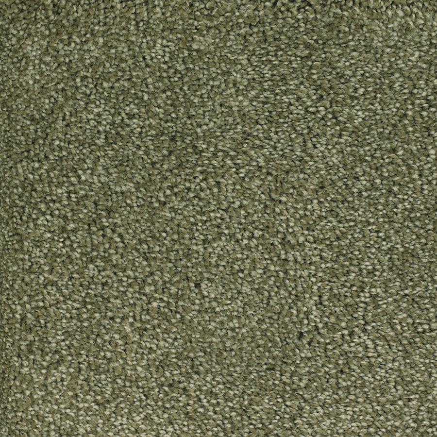 STAINMASTER Trusoft Shafer Valley Green Textured Interior Carpet