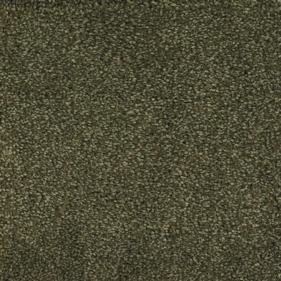 STAINMASTER TruSoft Shafer Valley Green Textured Interior Carpet
