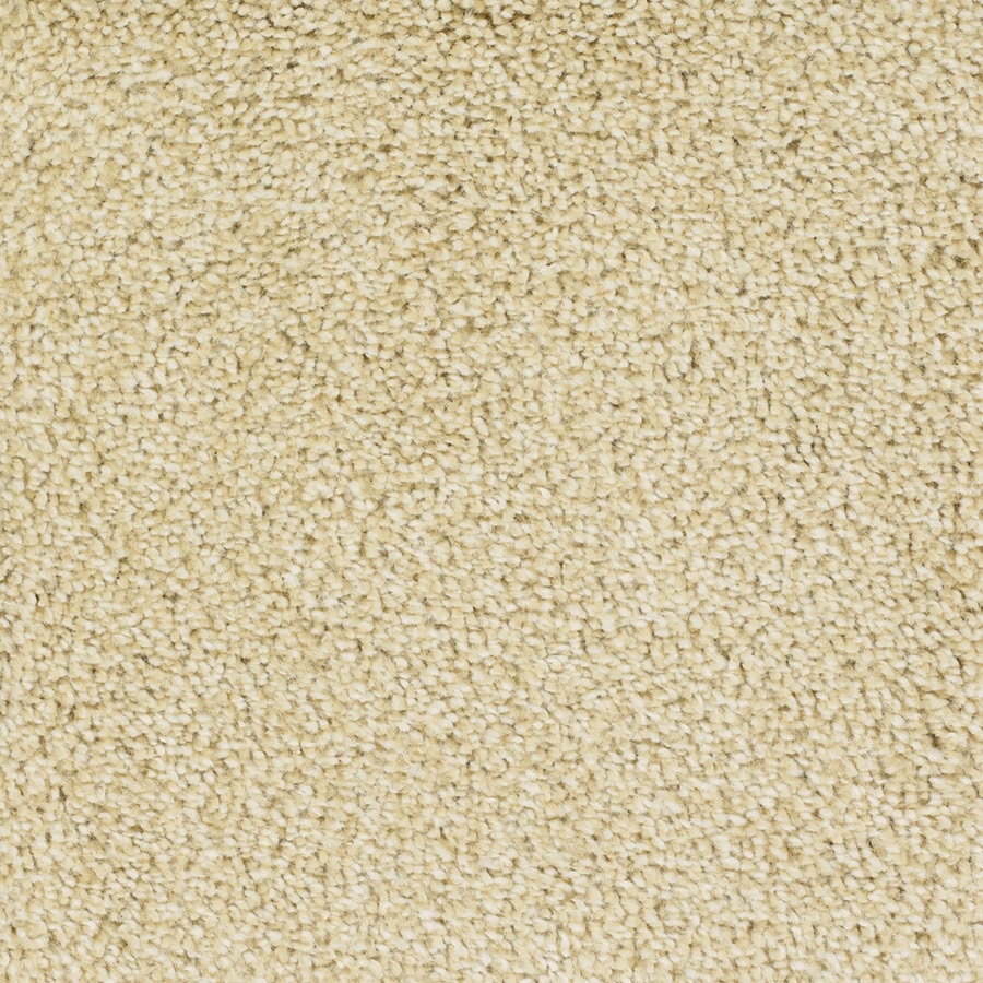 STAINMASTER TruSoft Shafer Valley 12-ft W Yellow/Gold Textured Interior Carpet