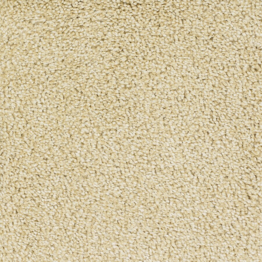 STAINMASTER TruSoft Shafer Valley Yellow/Gold Textured Indoor Carpet