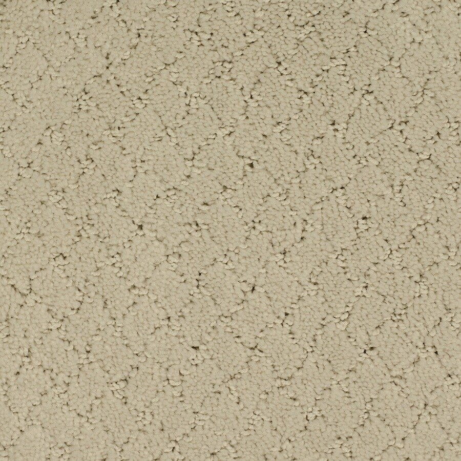 STAINMASTER TruSoft Galesburg Cream/Beige/Almond Cut and Loop Indoor Carpet