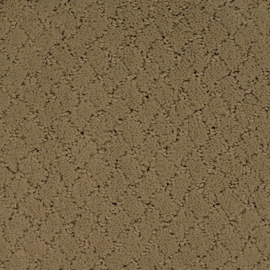 STAINMASTER Trusoft Galesburg 12-ft W x Cut-to-Length Brown/Tan Pattern Interior Carpet