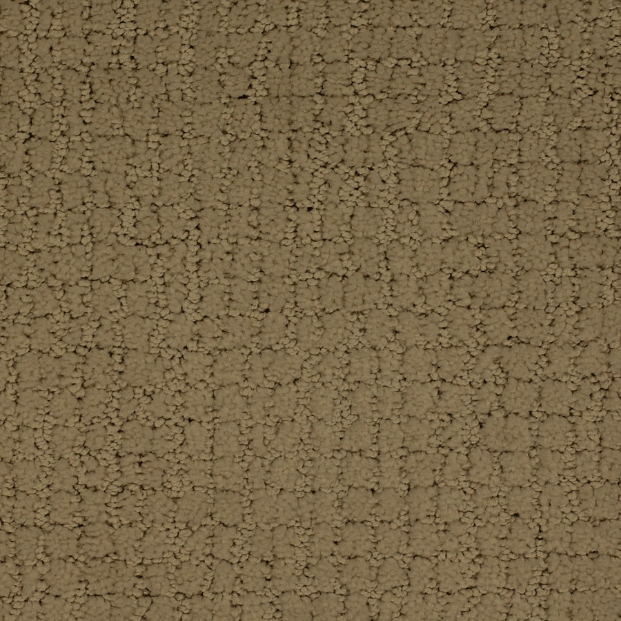 STAINMASTER TruSoft Perpetual Brown/Tan Interior Carpet