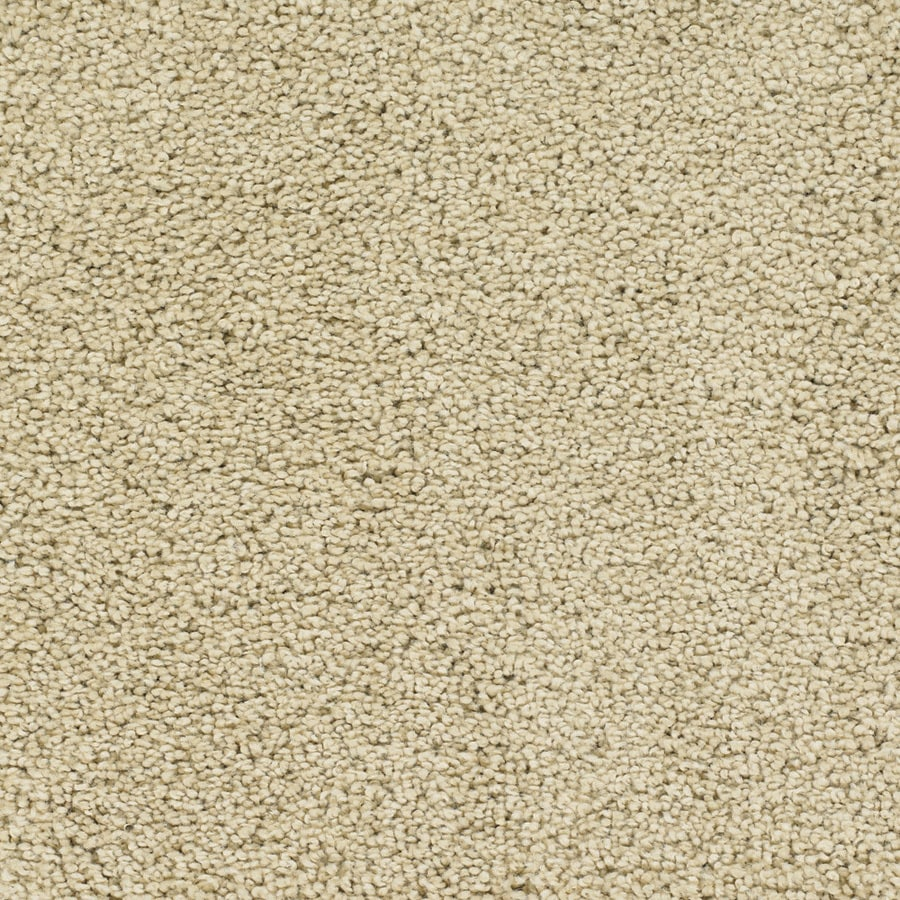 STAINMASTER TruSoft Chimney Rock Cream/Beige/Almond Textured Interior Carpet