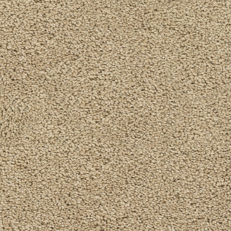 STAINMASTER TruSoft Chimney Rock 12-ft W x Cut-to-Length Brown/Tan Textured Interior Carpet